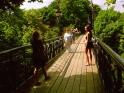 The Love Bridge in Mariïns'kyy Park, Kyiv, Ukraine